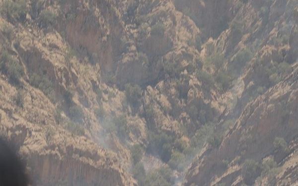 مهار آتش سوزی جنگل های اطراف روستای کریک در شهرستان دنا