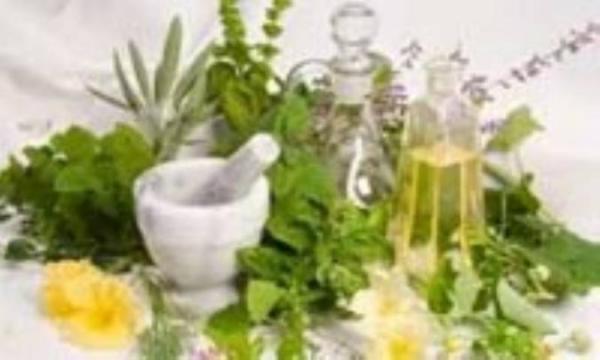 پنج گیاه سودمند برای سلامتی